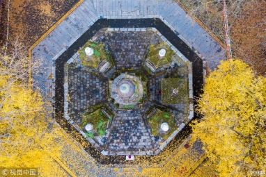 助设计落地 推产业升级 第八届中国国际空间设计大赛正式启动